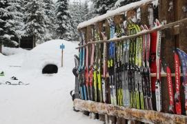 Ski er populært på vinteren!