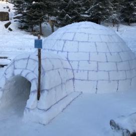 På vinteren bygger vi vår helt egen iglo